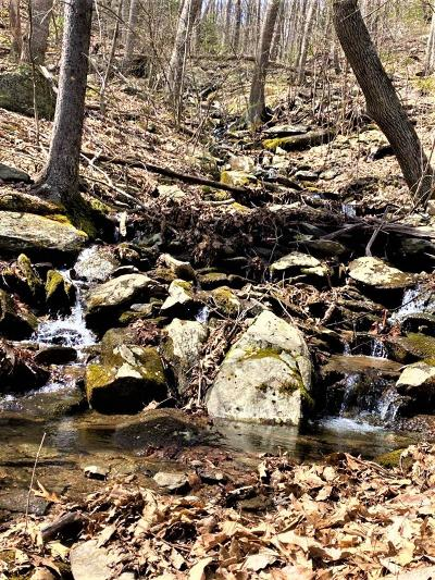 Carroll County, Grayson County Residential Lots & Land For Sale: 817 Low Gap Rd