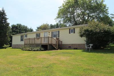 Rural Retreat Manufactured Home For Sale: 144 Ruby Dr