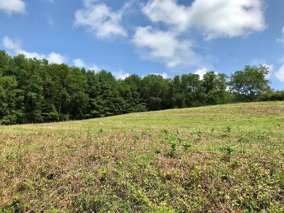 Hillsville VA Residential Lots & Land For Sale: $31,900