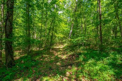 Bland Residential Lots & Land For Sale: Tbd Dinky Track Rd.