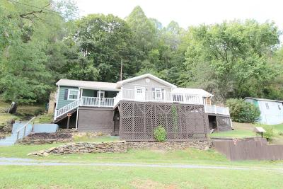 Saltville Single Family Home For Sale: 30095 North Fork River Road