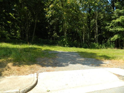 Marion Residential Lots & Land For Sale: Tbd Cemetery Street
