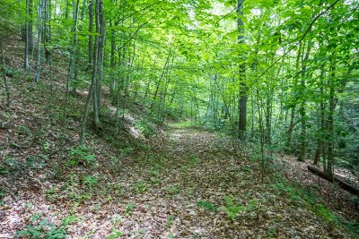 Saltville Residential Lots & Land For Sale: Tbd Back Hollow Road