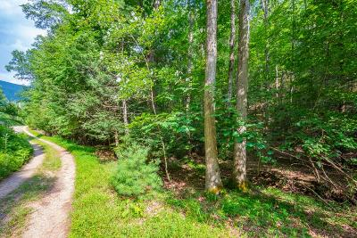 Wytheville Residential Lots & Land For Sale: Tbd Griffith Knob