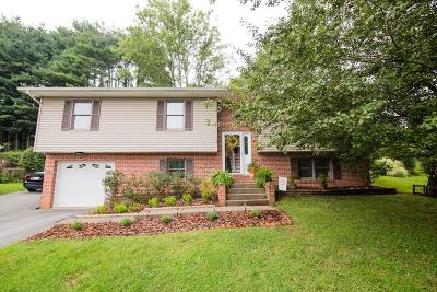 Abingdon Single Family Home For Sale: 165 Hillside Drive