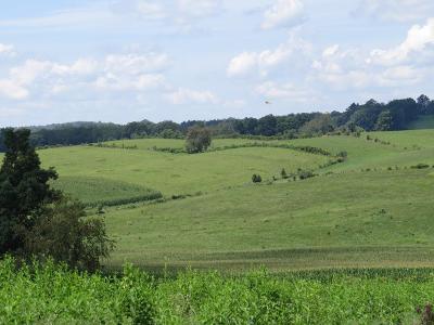 Abingdon Residential Lots & Land For Sale: 19428 Waylon