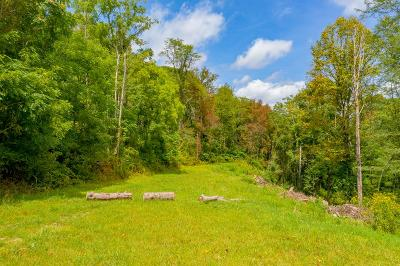 Wytheville Residential Lots & Land For Sale: Lot 21 Whippoorwilll Drive