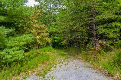 Wytheville Residential Lots & Land For Sale: Tbd Blackberry Drive