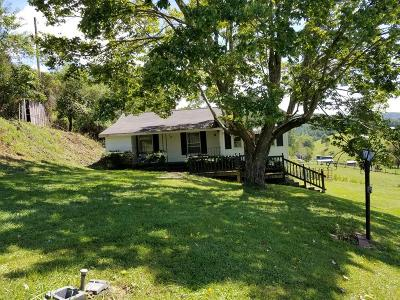 Grayson County Single Family Home For Sale: 5680 Troutdale Highway