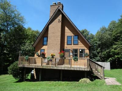 Carroll County Single Family Home For Sale: 495 Mountain View Drive