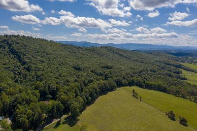 Wytheville Residential Lots & Land For Sale: 5.5 Acre Drifty Lane