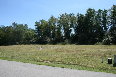 Wytheville Residential Lots & Land For Sale: Tbd Lot #9 Fairfield Subdivision