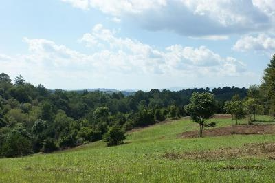 Carroll County, Grayson County Residential Lots & Land For Sale: Tbd Cornerstone Rd