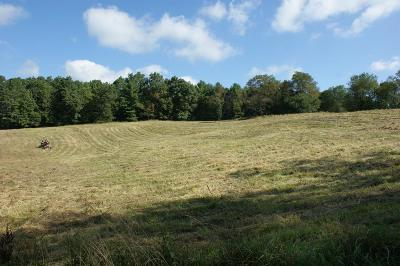 Carroll County, Grayson County Residential Lots & Land For Sale: 824 Hunters Ln