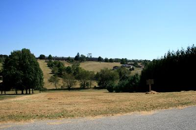 Wytheville Residential Lots & Land For Sale: 600 Wytheview Drive