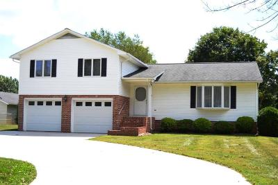 Wytheville Single Family Home For Sale: 185 Fairway Lane