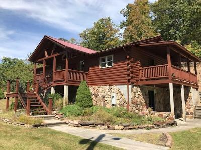 Wytheville Single Family Home For Sale: 986 Gullion Fork Rd