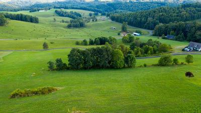 Hillsville VA Residential Lots & Land For Sale: $29,500