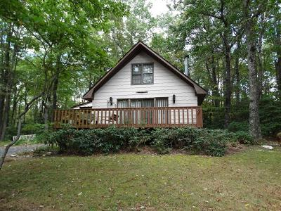 Carroll County Single Family Home For Sale: 272 Old Home Trail