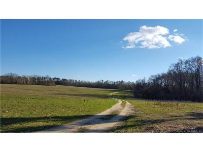 Isle Of Wight County, James City County, Mathews County, Middlesex County, New Kent County, Newport News County, Poquoson County, Suffolk County, Surry County, Williamsburg County, York County Residential Lots & Land For Sale: 2301 Jolly Pond Road