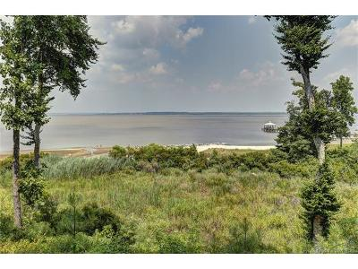 Isle Of Wight County, James City County, Mathews County, Middlesex County, New Kent County, Newport News County, Poquoson County, Suffolk County, Surry County, Williamsburg County, York County Residential Lots & Land For Sale: 0000 Stewarts Road