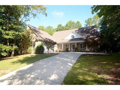 Williamsburg Single Family Home For Sale: 102 Eagle