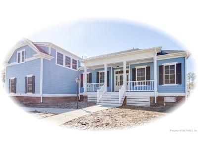 Newport News Single Family Home For Sale: 119 Willet Way