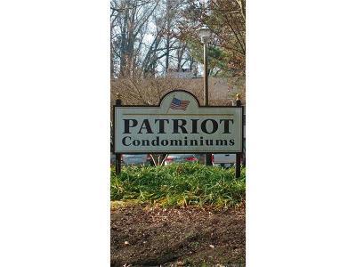 Condo/Townhouse For Sale: 304 Patriot Lane #E