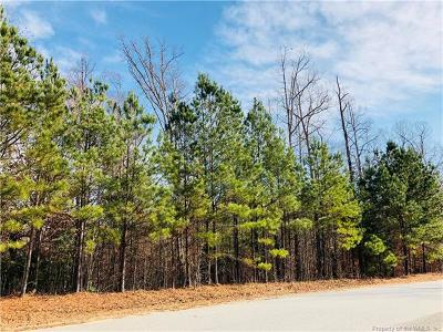 Charles City Co., Isle Of Wight County, James City Co., New Kent County, Newport News County, Suffolk County, Surry County, Williamsburg County, York County Residential Lots & Land For Sale: Tbd Blue Heron Drive