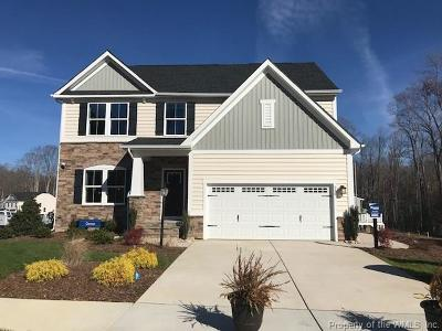 York County Single Family Home For Sale: 517 Clements Mill Trace