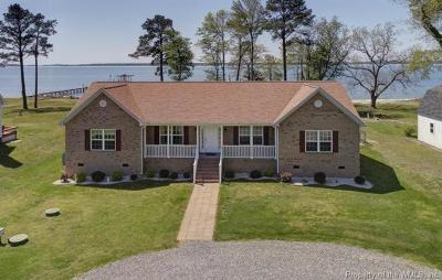 Single Family Home For Sale: 9238 Sandy Pines Lane