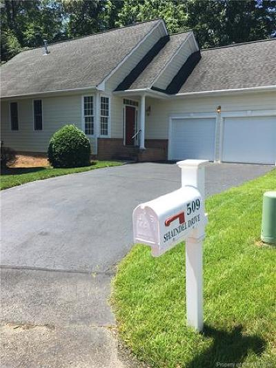 Single Family Home For Sale: 509 Shaindel Drive
