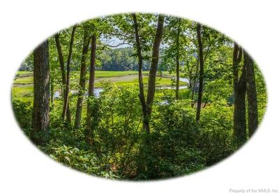Williamsburg Residential Lots & Land For Sale: 402 Skimino Landing Drive