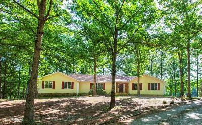 New Kent County Single Family Home For Sale: 17950 New Kent Highway