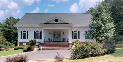 New Kent County Single Family Home For Sale: 19207 High Bluff Lane