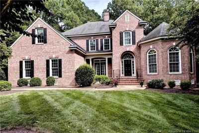 Fords Colony, Kingsmill Single Family Home For Sale: 110 Stone Bridge
