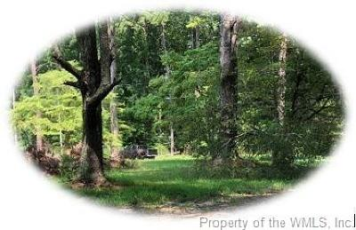 Toano Residential Lots & Land For Sale: 9911 Sycamore Landing Road