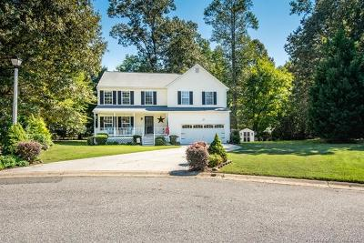 Williamsburg Single Family Home For Sale: 4036 Red Wing Court