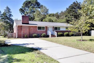 Williamsburg Single Family Home For Sale: 491 Catesby Lane