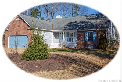 Williamsburg Single Family Home For Sale: 3404 Southport Trail