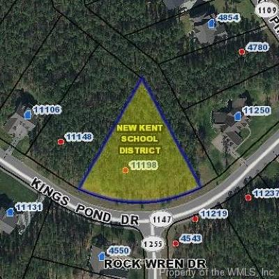 Residential Lots & Land For Sale: 11198 Kings Pond Drive