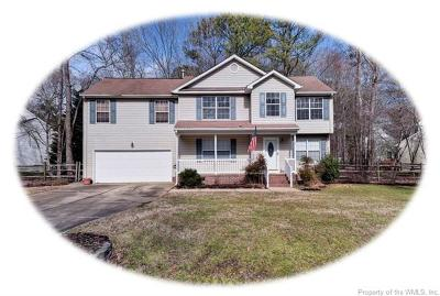Williamsburg Single Family Home For Sale: 2917 Lancaster Court