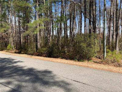 Residential Lots & Land For Sale: 119 Land Grant Road