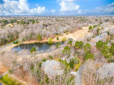 Fords Colony, Kingsmill Single Family Home For Sale: 103 Stone Bridge