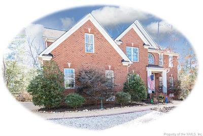 Single Family Home For Sale: 204 Skimino Landing Drive