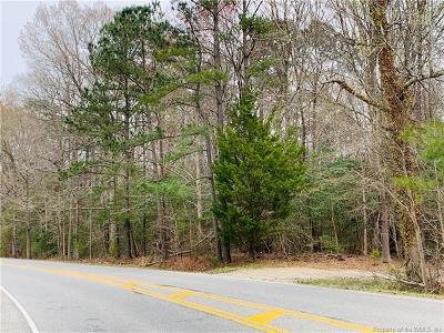 Residential Lots & Land For Sale: 3304 Old Williamsburg Road