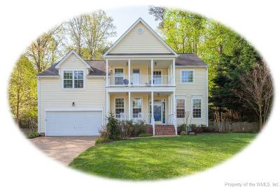 Williamsburg Single Family Home For Sale: 3741 Captain Wynne Drive #D