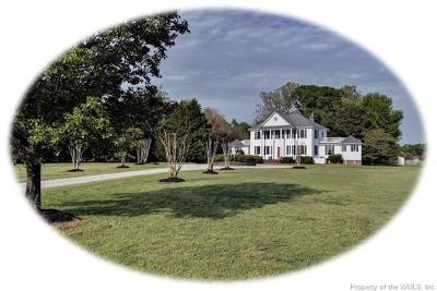 Single Family Home For Sale: 102 Shady Bluff Point