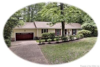 Williamsburg Single Family Home For Sale: 105 Buford Road