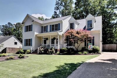 Williamsburg Single Family Home For Sale: 4808 Blue Bill Run
